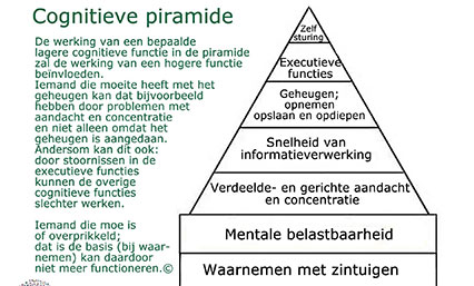 De cognitieve piramide